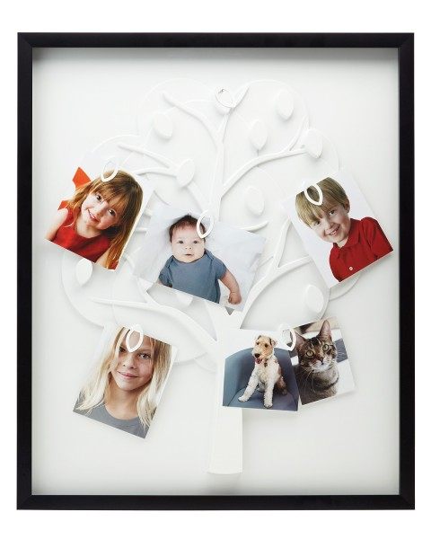 family tree picture frame 480x600 Family Tree Picture Frame